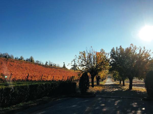 Fall escape in Piemonte & Villa Crespi